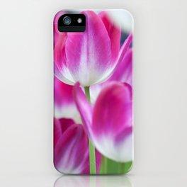 Spring Celebration. Tulips of Keukenhof iPhone Case