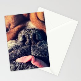 dog the dude Stationery Cards