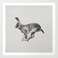 hare Art Prints featuring Hare by Darcy Cash