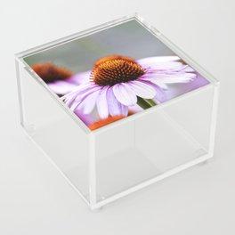 Pink Daisy Acrylic Box