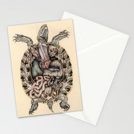 Anatomical Dissection of a Red Eared Terrapin Stationery Cards