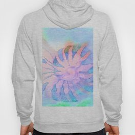 NAUTILUS CONCH SEA SHELL IMPRESSION Hoody
