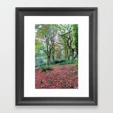 Thornthwaite Framed Art Print