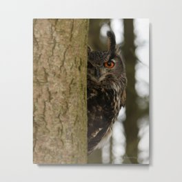 Eye Spy Metal Print