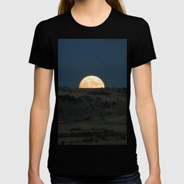 Peek-A-Boo T-shirt