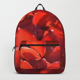Vermilion Backpack