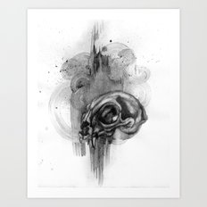 Cat Skull Charcoal Drawing Art Print