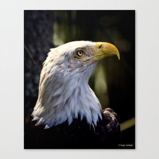 Proud Bald Eagle Canvas Print