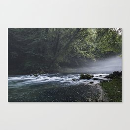 Running Water Misty Forest Canvas Print