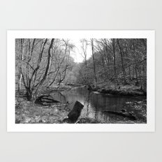 Stream on a Mountain Art Print