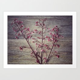 Shabby chic coral bell flowers Art Print