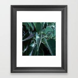 Botanical night dream Framed Art Print