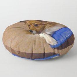 My Frisbee Floor Pillow