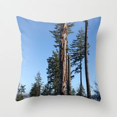 The Old Guard Throw Pillow