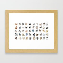 50 cat bleps! Framed Art Print
