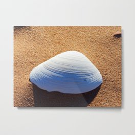 Clam Shell on the Beach Metal Print