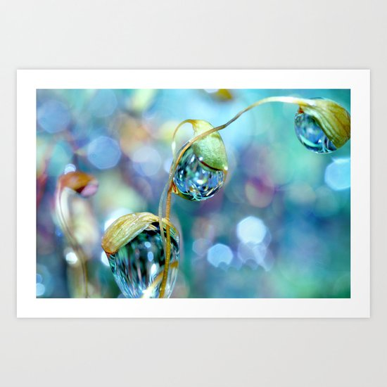 Rainbow Moss Drops Art Print