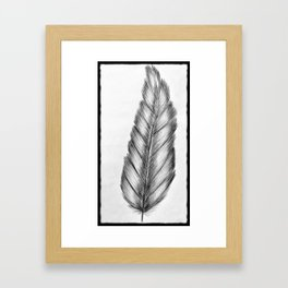 Lone Feather Framed Art Print