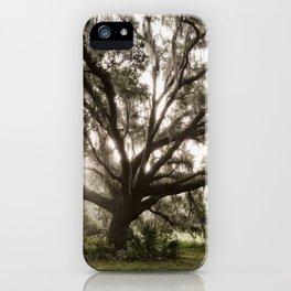 The Majestic Live Oak iPhone Case