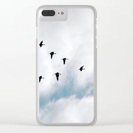 """Flock"" Bird Art by Murray Bolesta Clear iPhone Case"