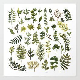 green leaf and grass watercolor pattern Art Print