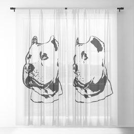 PITT-BULL TERRIER DOG Sheer Curtain