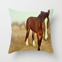 I dream of draft Throw Pillow