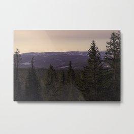 Norwegian Woods Metal Print