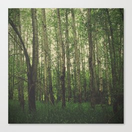 Green Space Canvas Print