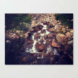 creek Canvas Print