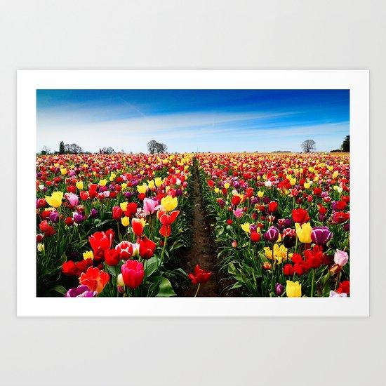 Coloring Vanishing Point, Tulip Festival in Woodburn, Oregon Art Print