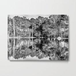 Crossing the Lake - Black & White Metal Print