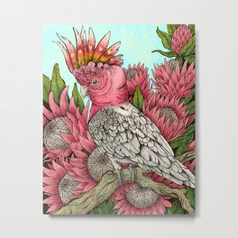 Major Mitchells Cockatoo Metal Print