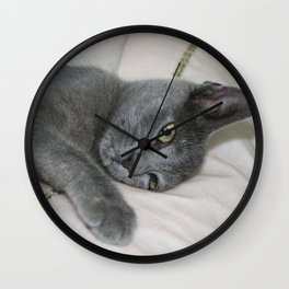 Russian Blue Kitten Relaxed On A Bed Wall Clock