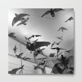 winged flight Metal Print