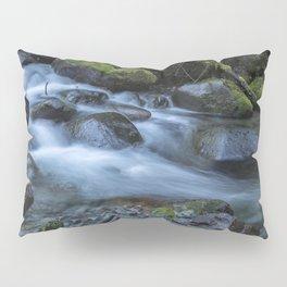 Water, Moss and Rocks Pillow Sham