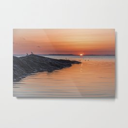 Plum Cove Sunset Metal Print