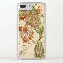Gongora latisepala Clear iPhone Case