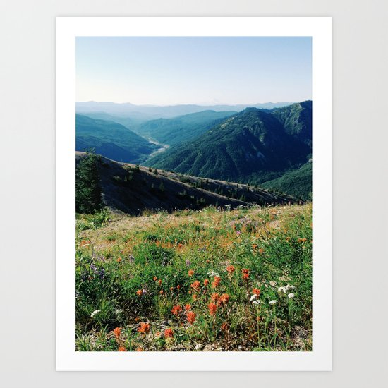 Gifford Pinchot National Forest Art Print