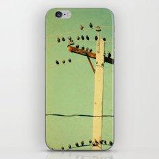 Retro Tweeters iPhone & iPod Skin