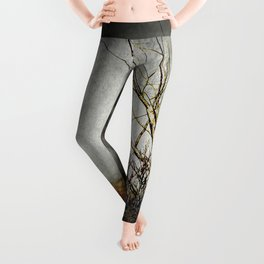 Land Of The Lost Leggings