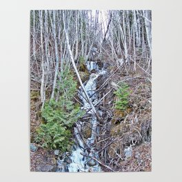 Mountain Side Creek  Poster