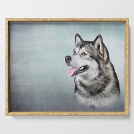 Drawing Dog Alaskan Malamute Serving Tray