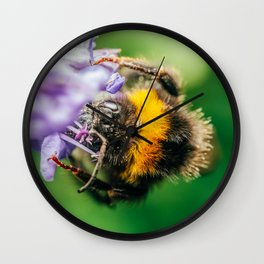 Happy Bumblebee, Bumble-Bee Flying, Gathering Flower Pollen, Bee, Insect Macro Photography Wall Clock