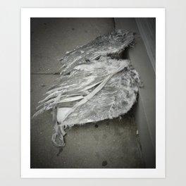 Discarded Wings, 2011.  New Orleans, LA. Art Print