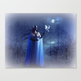 GLOWING BRIGHTLY IN THE NIGHT SKIES 02 Canvas Print