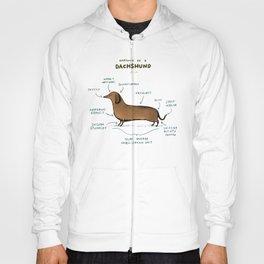Anatomy of a Dachshund Hoody