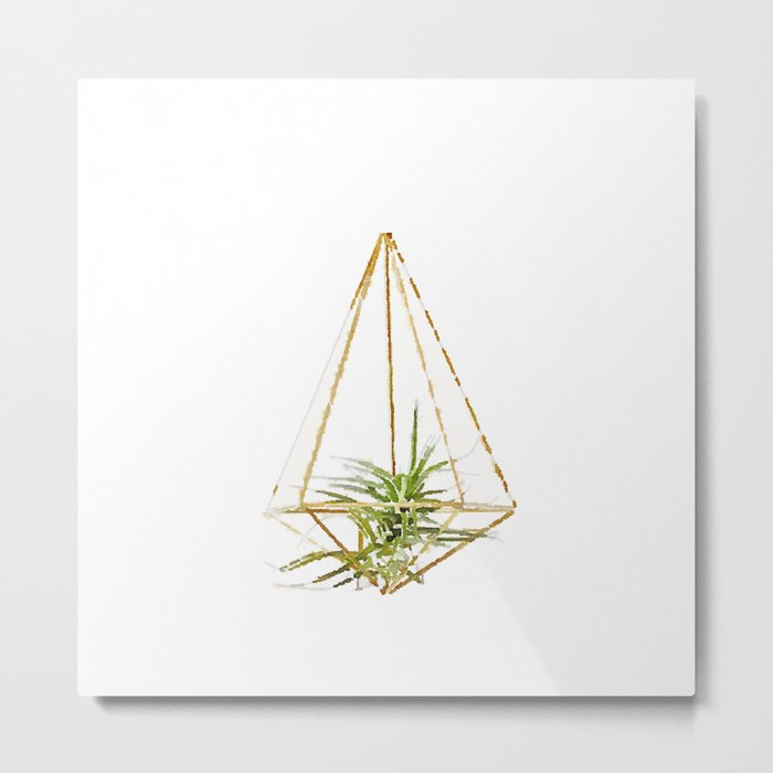 Air Plant no. 1 Metal Print