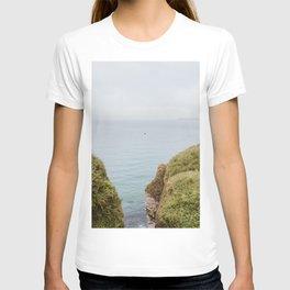 Ocean Print, Moody Bird Flying, Green Hill & Cliff, Sea Coast Print from Ireland, UK   Landscape Travel Photography, Wall Decor T-shirt
