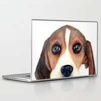 beagle Laptop & iPad Skins featuring Beagle by Carmen Lai Graphics